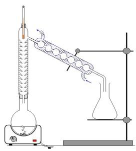 science physique 5ème